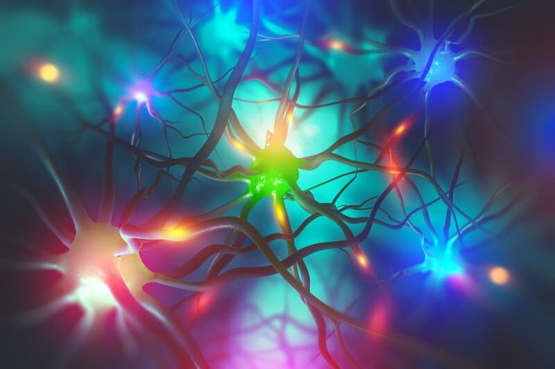 How Your Thoughts Change Your Brain, Cells, And Genes