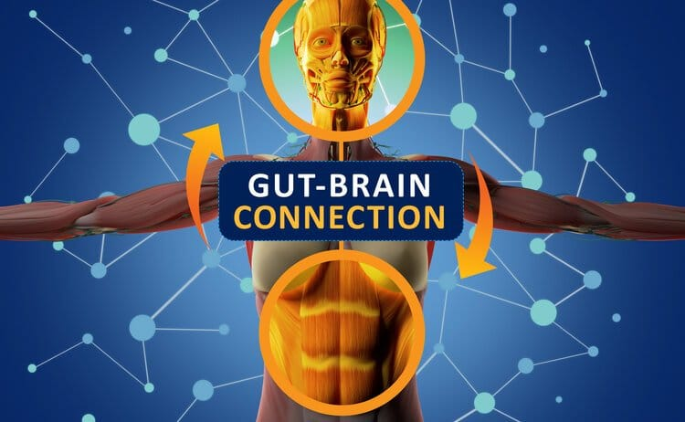 5 Brain and Mental Health Conditions Linked to Your Gut